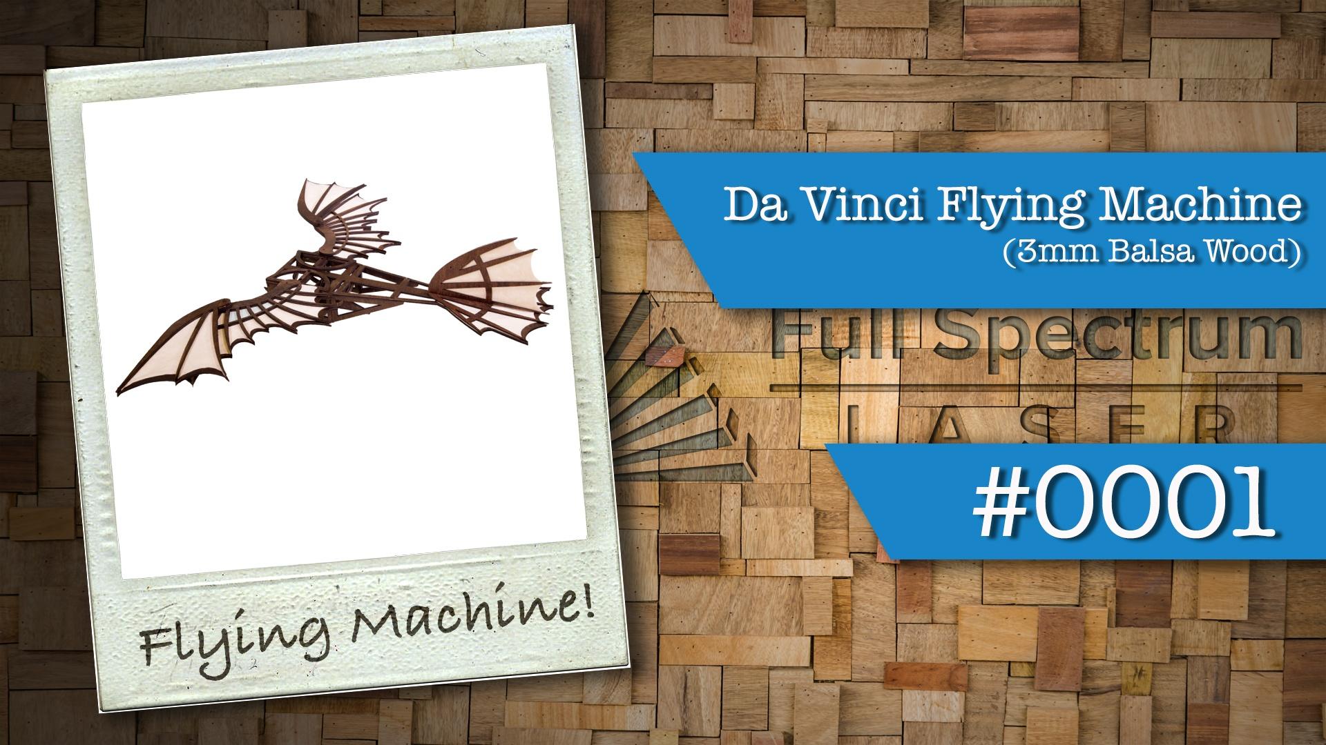 001 - Davinci Flying Machine.jpg